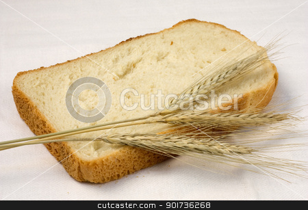 Bread and wheat. stock photo, The Piece of bread, ear of the wheat on white background. by Yury Ponomarev