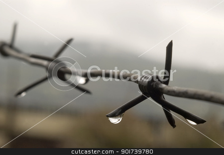 Barbed wire with drops of a rain. stock photo, Barbed wire with drops of a rain on a background of the sky. by Yury Ponomarev