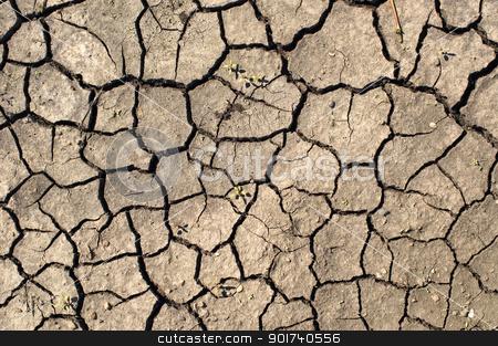 Drought. stock photo, Dry ground. by Yury Ponomarev