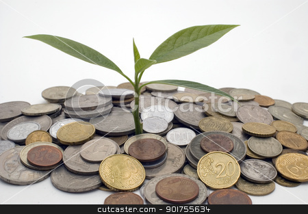 Financial growth.Conceptual image. stock photo, Coins and plant, isolated on white background. by Yury Ponomarev