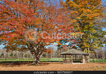Gazebo in Autumn stock photo, A wooden Gazebo in a park with surrounding trees showing fall foliage. Photo was taken in historic Allaire Park in New Jersey, USA. by Stephen Bonk