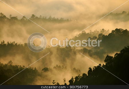 Tropical Mountain Range stock photo, Morning Mist at Tropical Mountain Range, Malaysia  by szefei