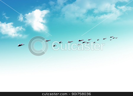 Flying birds stock photo, Flying birds in autumn by Diana