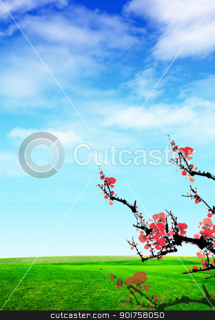 Tree stock photo, Nice tree in the field by Diana