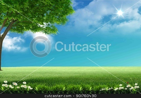 Green tree stock photo, Green tree in the field by Diana