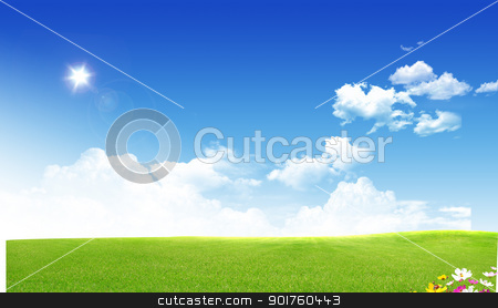 Summer stock photo, Green field on sky background by Diana