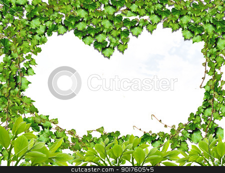 Green heart stock photo, Green heart for you by Diana