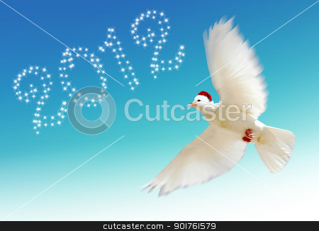 Merry Christmas and dove stock photo, Christmas hat and dove on blue background by Diana