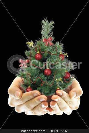 Christmas tree in the hand stock photo, Big green Christmas tree in the hand by Diana