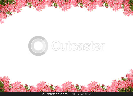 Pink flowers stock photo, Pink flowers on sky background by Diana