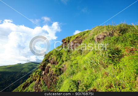 Green forest and high mountain stock photo, Green forest and high mountain in Thailand by kongsky