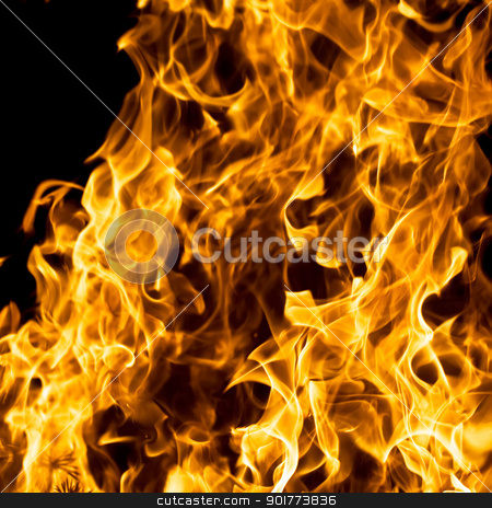 Fire stock photo, Beautiful flame burning on black background by Alexey Popov