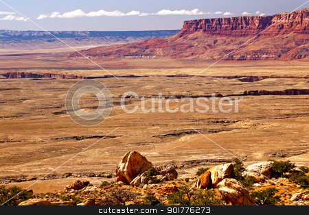 Red Mesa Grand Canyon Arizona stock photo, Red Mesa Rock Grand Canyon Arizona.  This view is of Grand Canyon north from top/ by William Perry