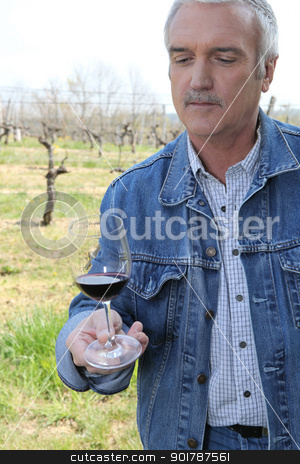 Man tasting red wine stock photo, Man tasting red wine by photography33