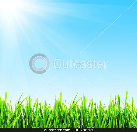 Spring background stock photo, Fresh green grass under blue sky by Alexey Popov