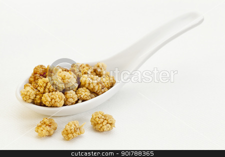 spoon of dried white mulberries stock photo, sun-dried white mulberry berries on a ceramic tablespoon by Marek Uliasz