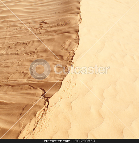 sahara desert stock photo, beautiful day in the dunes of Africa by Viktor Thaut