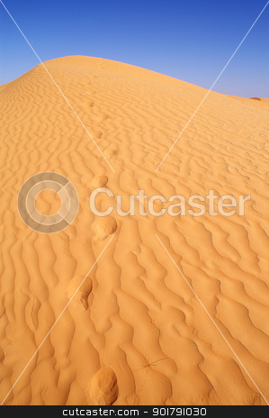 Desert stock photo, beautiful day in the dunes of Africa by Viktor Thaut