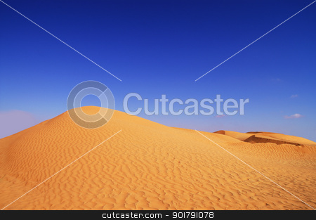 dunes and blue sky stock photo, beautiful day in the dunes of Africa by Viktor Thaut