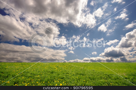 fresh summer landscape stock photo, fresh summer landscape with meadow and sky by Ioan Panaite