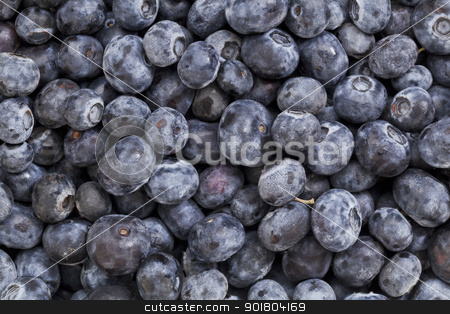blueberry texture background stock photo, macro of fresh organic blueberry berries - texture background by Marek Uliasz