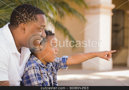 Mixed Race Father and Son Pointing in the Park stock photo, Happy African American Father and Mixed Race Son Pointing in the Park. by Andy Dean