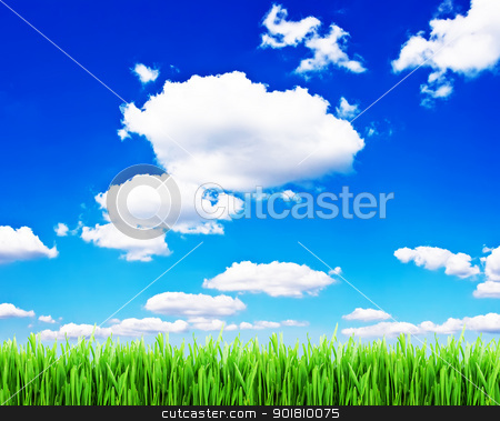 Grass and sky stock photo, Green grass under blue cloudy sky by Alexey Popov