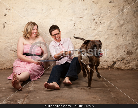 Ladies with Funny Dog stock photo, Laughing friends sitting on the floor with funny dog by Scott Griessel