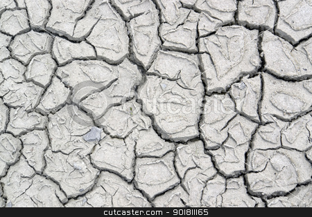 fissured ground stock photo, abstract dry muddy and fissured ground by prill