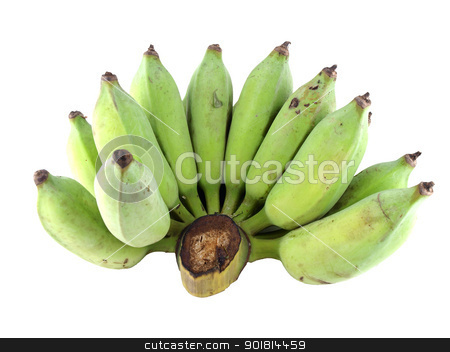 fresh banana, raw banana stock photo, Fresh cultivated banana, raw banana    by jakgree