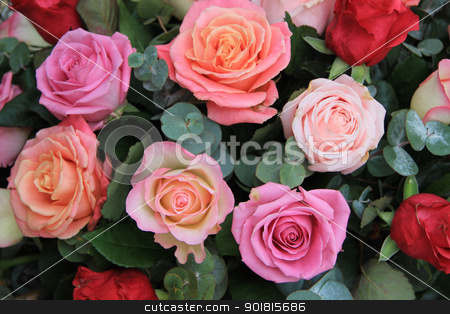 Roses in different shades of pink stock photo, Mixed rose bouquet in different shades of pink and orange by Porto Sabbia