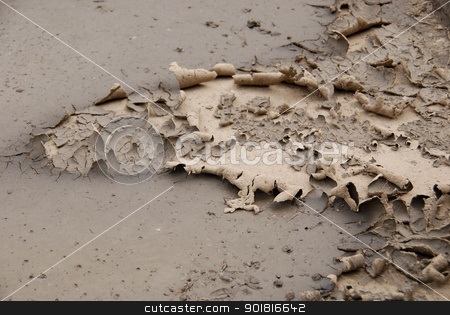 Drought stock photo, Drought in a city by Vadim