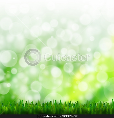 natural green background with selective focus stock photo, natural green background with selective focus by jakgree