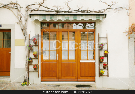 house door and huge flower jar, Lausanne, Switzerland stock photo, house door and huge flower jar, Lausanne, Switzerland by dacasdo