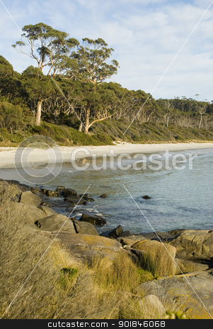 Fortescue Bay stock photo, Secluded sandy beach at Fortescue bay, Tasmania, Australia by Stephen Gibson