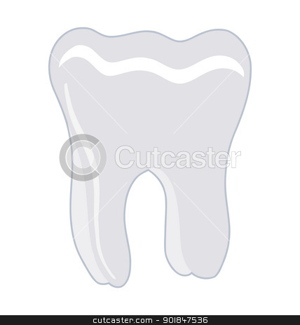 tooth stock vector clipart, One healthy human tooth on white background by Oleksandr Kovalenko