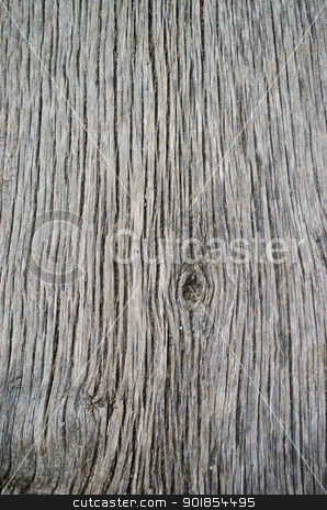 Wood texture stock photo, Rough wood or timber texture by Stefano Cavoretto