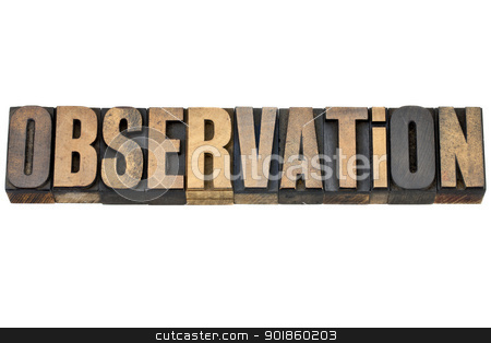observation word in wood type stock photo, observation - isolated word in vintage letterpress wood type by Marek Uliasz