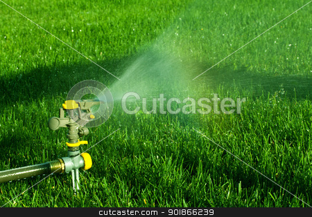 Summertime Sprinkler stock photo, a sprinkler watering a lawn by Rachel Duchesne