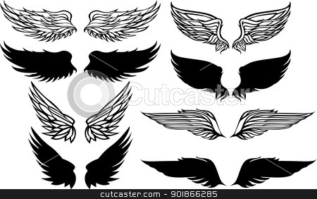 Wings Graphic Vector Set stock vector clipart, Graphic Vector Images of Bird Wings by chromaco
