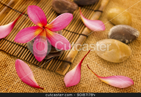 Spa setting stock photo, Tropical spa with frangipani flowers. by szefei