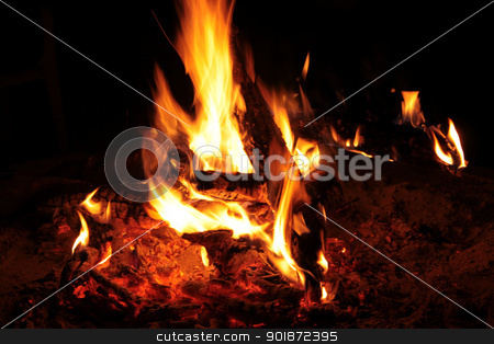 Bushveld Fire stock photo, Picture of Warm Flaming Bushveld Fire at Night by Snap2Art