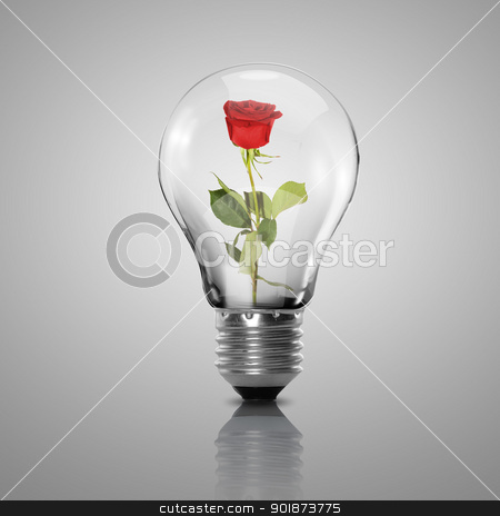 Electric light bulb and flower inside it stock photo, Electric light bulb and flower inside it as symbol of green energy by Sergey Nivens