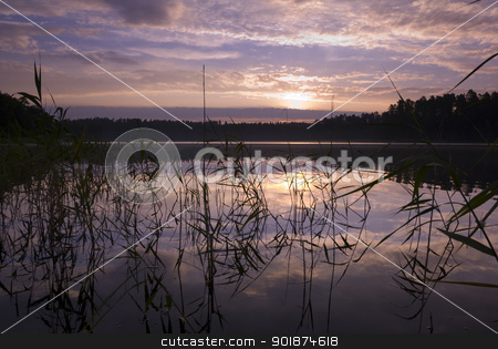 Sunrise. stock photo, Sunrise over the lake, silhouettes of water plants, aRGB. by Piotr Skubisz