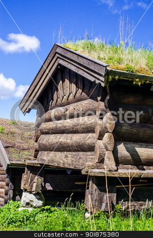 Norwegian typical house stock photo, Norwegian typical house with  grass roof by Nanisimova