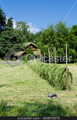 Norwegian ancient village stock photo, Norwegian village of 18th century by Nanisimova
