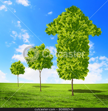 Green grass arrows stock photo, Green grass word success against blue sky by Sergey Nivens