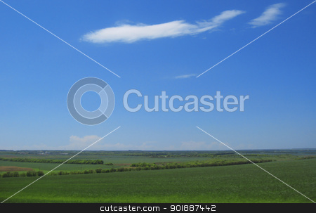 Green field and blue sky and white clouds stock photo, Green field and blue sky and white clouds by sculler