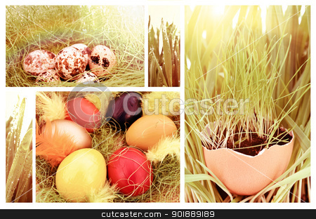 Easter stock photo, Easter set: different backgrounds with eggs and green grass by Sergej Razvodovskij