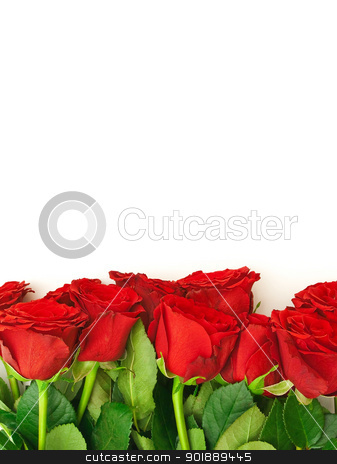 rose border - rose flower stock photo, template for the invitation cards with red roses   - rose flower by Sergej Razvodovskij